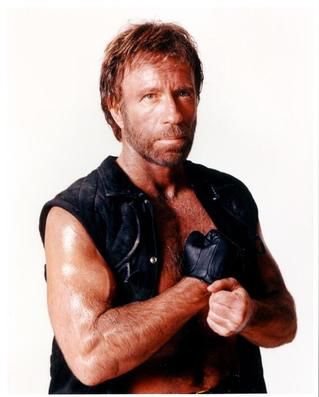 Chuck Norris supports Huckabee...yup good enough for me